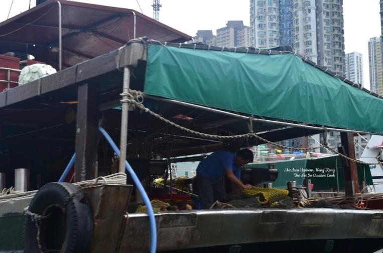 HKG, 2015 2 - TNSCC (15)